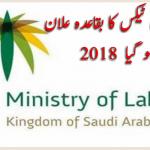سعودی ٹیکس کا بقاعدہ اعلان ہو گیا  2018